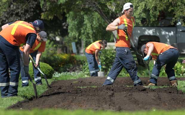 Terceirizar Serviços de Jardinagem